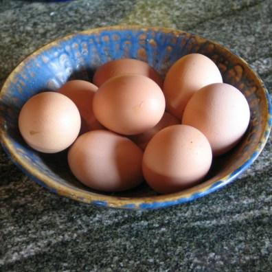Free range eggs ready for breakfast