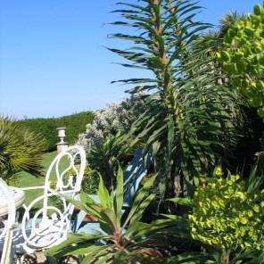 Lusciuos spring growth