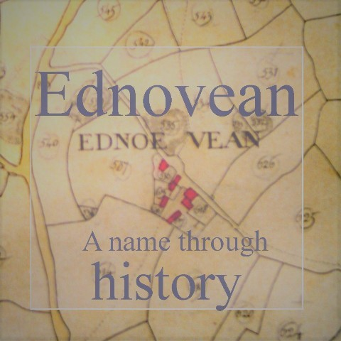 Ednovean Farm - a historic name upon the Tithe map spelt Ednoe Vean