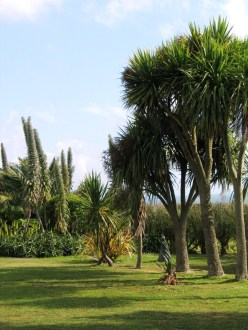 The Palm avenue with a statue on a sunken lawn