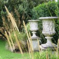 Garden grasses and Urns