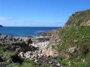 Porth Naven Beach
