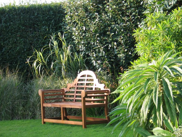 The gorgeous Lutyens style bench was an early birthday present joined by next year's Echiums emerging from the borders