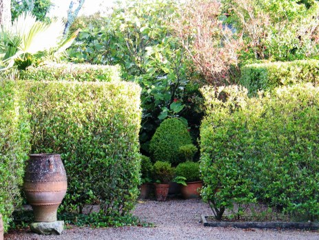 clustered pots full of box topiary