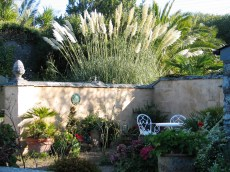 Tall dramatic pampas grass have given a new dimension o the september gardne
