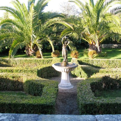 Fountain and Date Palms