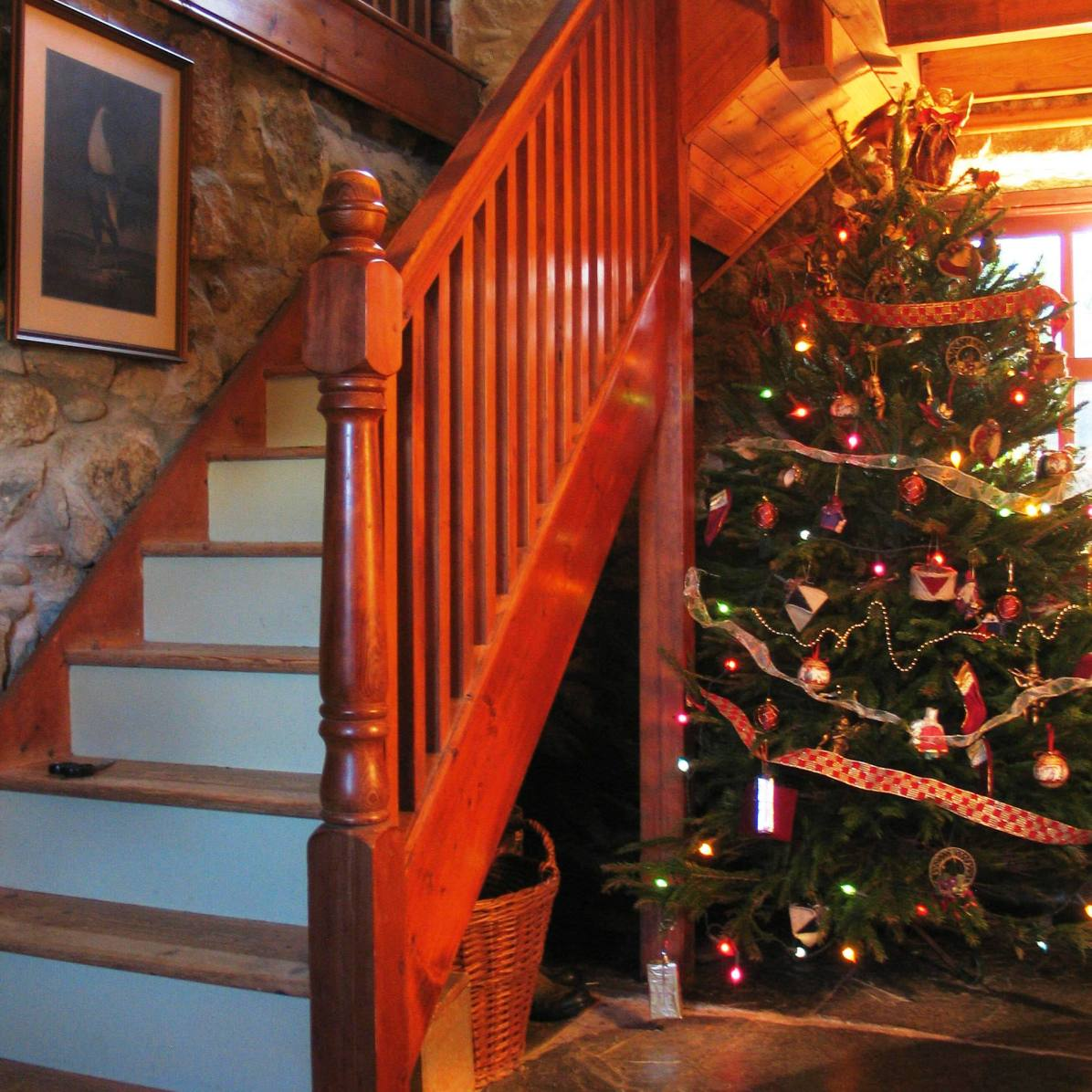Christmas tree under the stairs