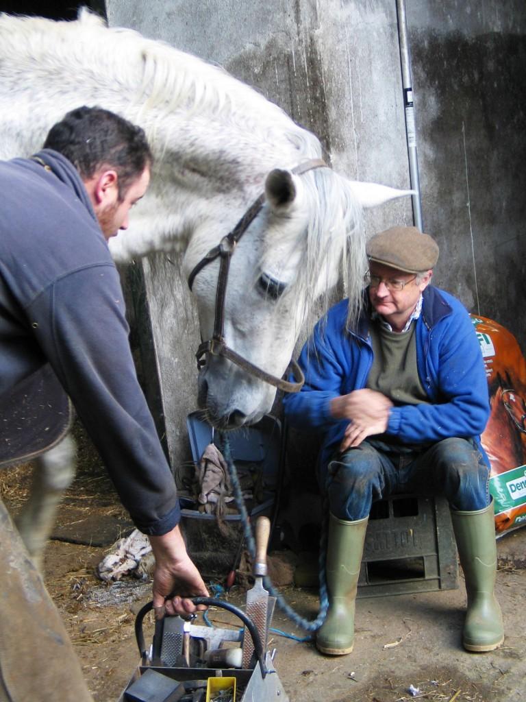 Danilon Pre stallion and the Blacksmith