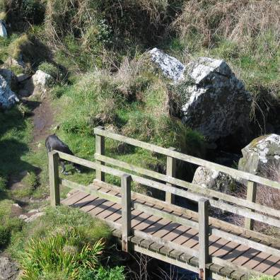 coastal footpath zennor to Gurnard's head