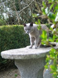 Louis at enjoys the secluded granite bench overlooking the Parterre