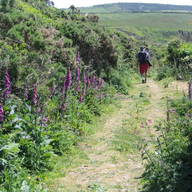 footpath from Trebarvah to the coastal footpath