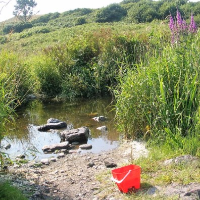A child bucket left beside a stream after a childhood game