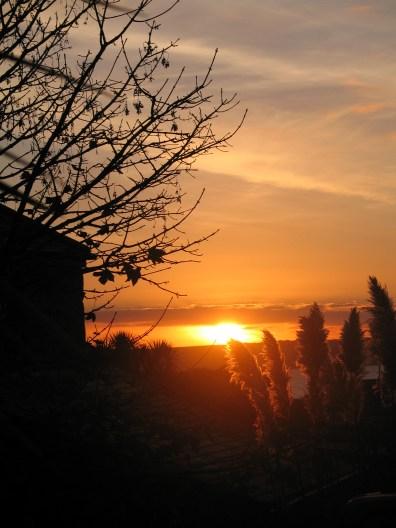 November sunset beyond the garden