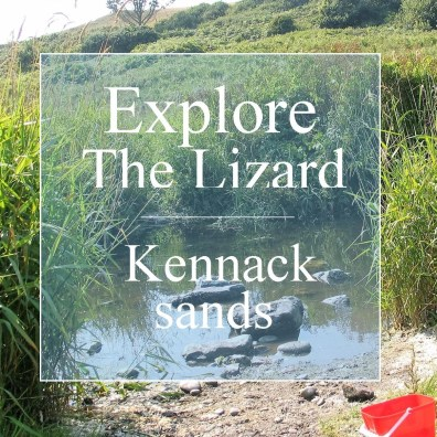 Explore the Lizard and Kennack Sands stream through reeds