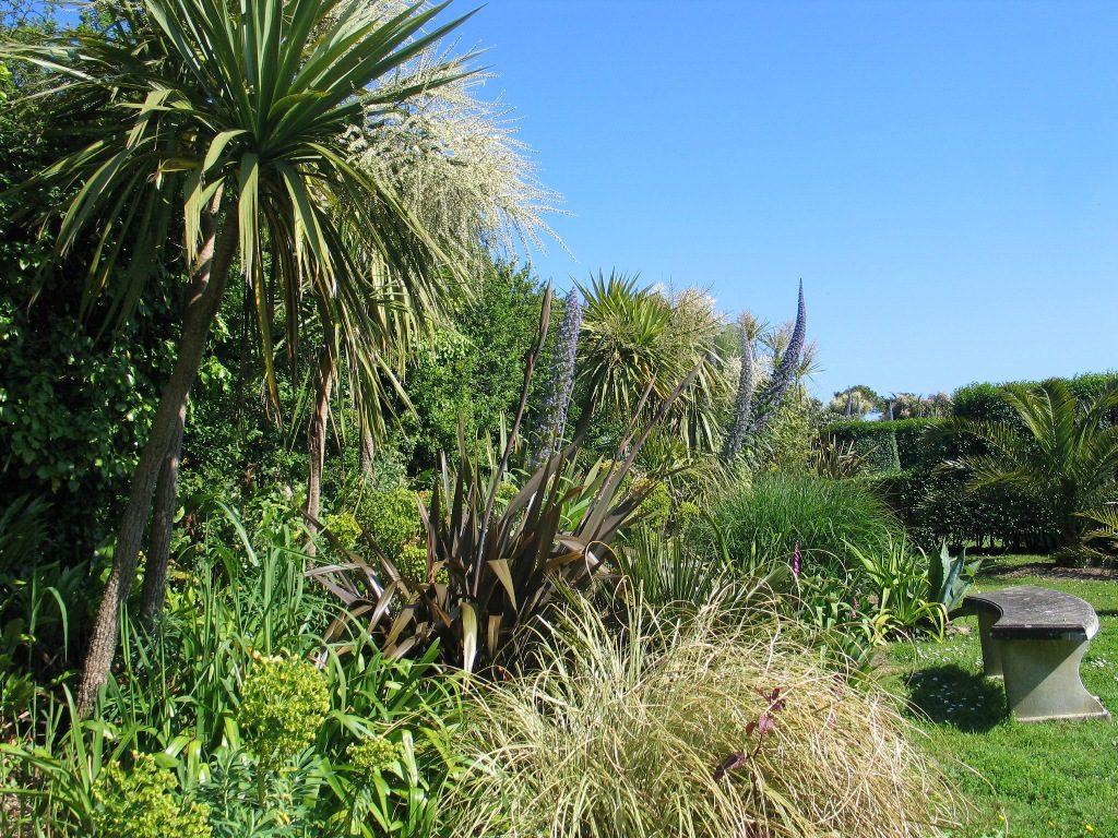 subtropical planting - ednovean farm garden