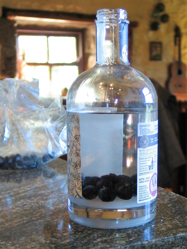 Gin, sugar and sloes in a bottle