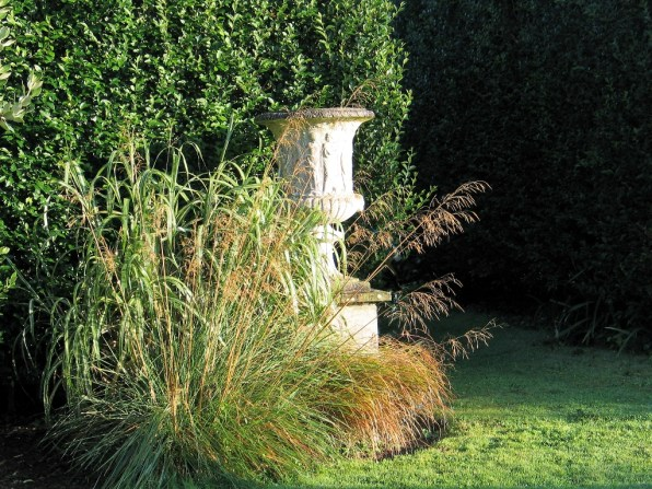 Golden oat grass and urn