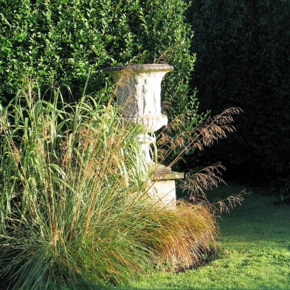 Golden oat grass and urn