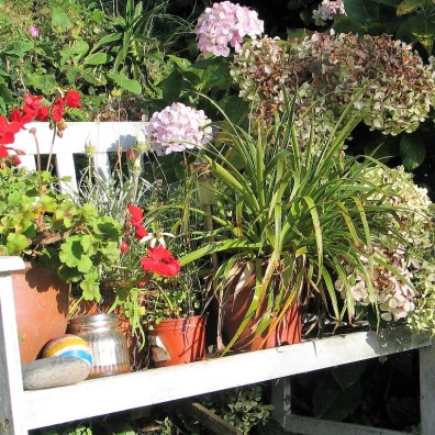 display bench for autumn