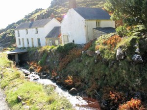 Old cottages beside a bracken laced stream