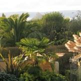 View over the garden - garden escape