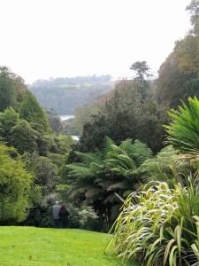 View through a valley - Trebah