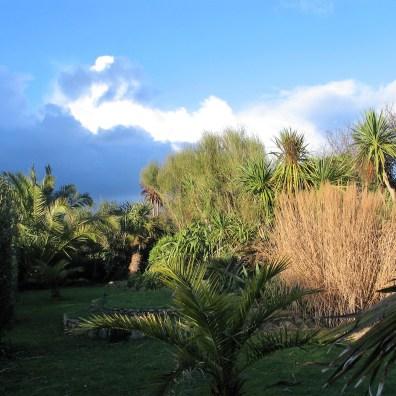 The low winter light in the Italian Garden