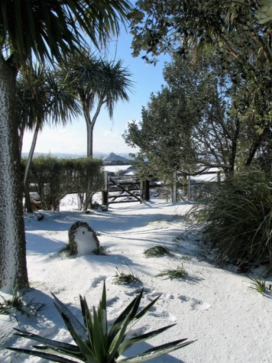 View to St Michael's mount from snowy garden