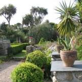 Box lined gravel terrace - may garden diary
