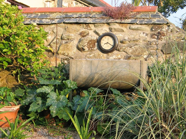 galvanised trough and terracotta pots filled with vegetables