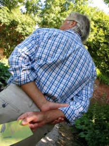 man looking at garden