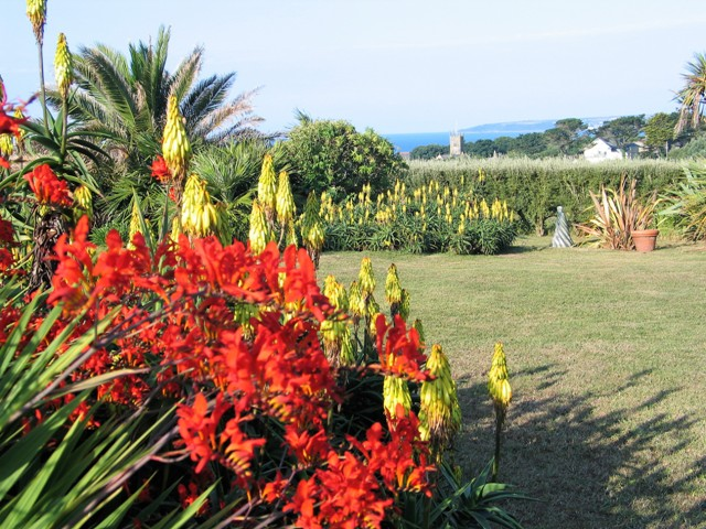 View across garden to the sea