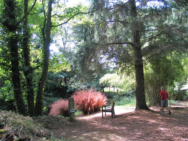 garden seat under trees overlooking lake