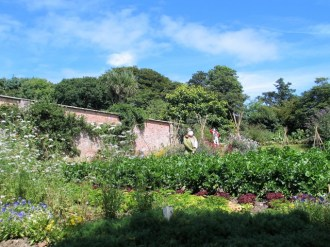 Tall brick walls hold the heat in the kitchen garden