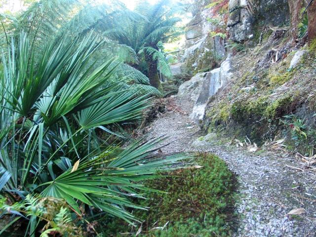 Granite outcrop in a cornish garden