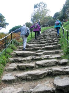 Our vist to St Michael's Moutn started witha steep climp up the stone steps