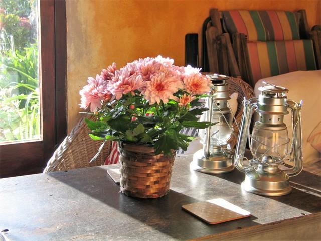 Pink flowers -garden room