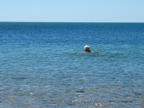 August brough warm clear seas to swim in = summer memory