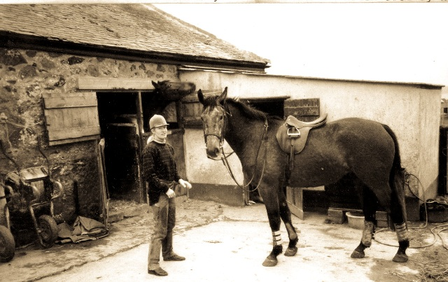horse in front of stables