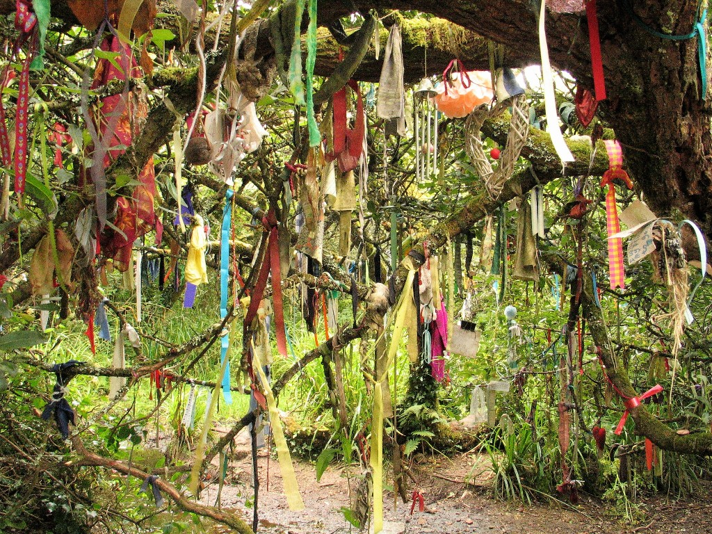 Every variety of offering hung from teh sacred tree near Madron Well