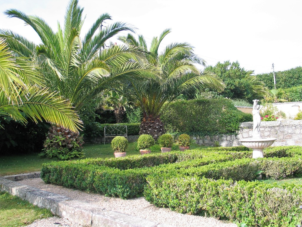 Enclosed courtyard garden with Date palms at Ednovean Farm
