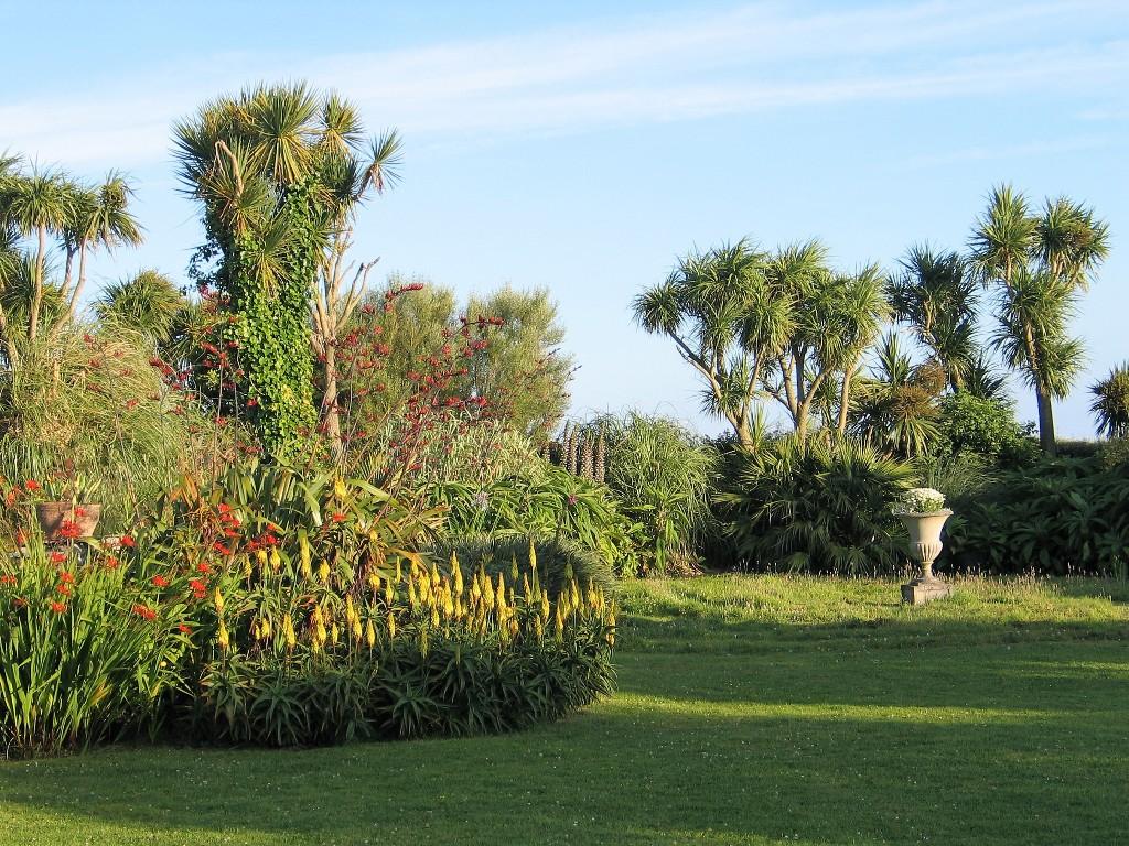 Hot summer colours in the July garden borders = ednovean garden diary