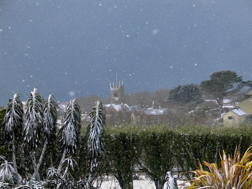 Winter snowfall at Ednovean Farm makes a perfect Christmas card