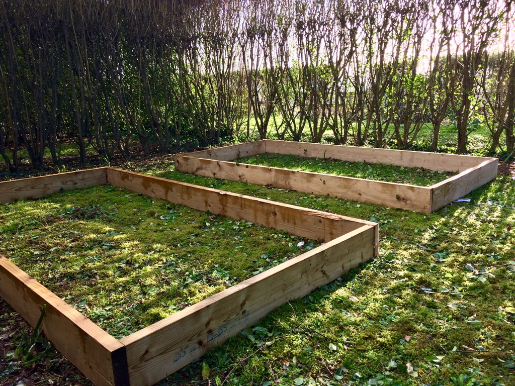 patager - new raised bed beginning work