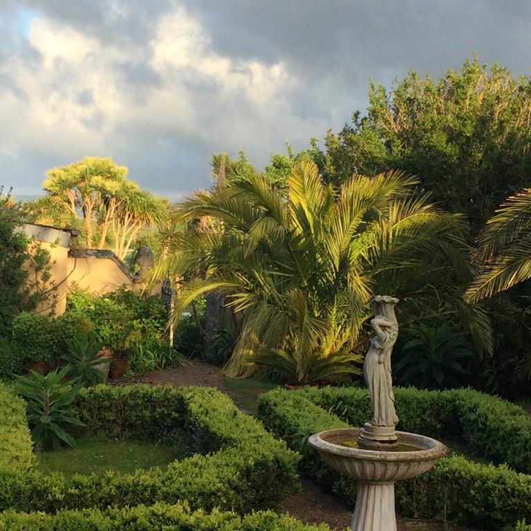 Sub tropical courtyard gardens at Ednovean Farm - Date Palms parterre and fountain