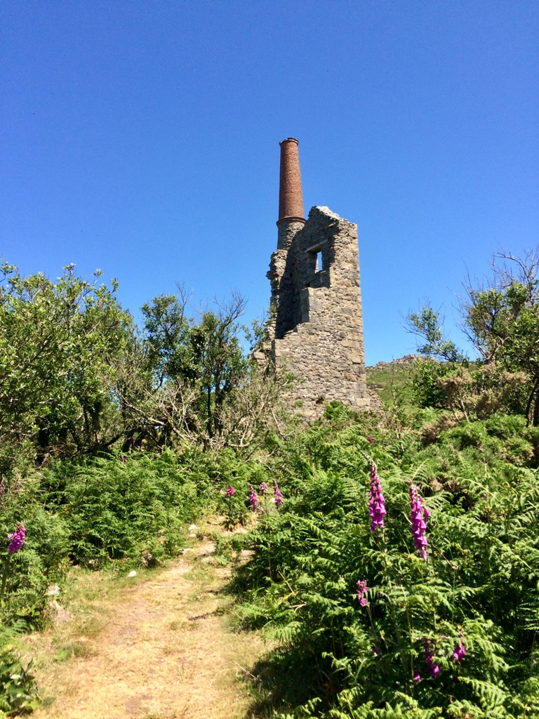 Footpath back from the cliff to the right of the ruined pumping house of Carn Galva Mine