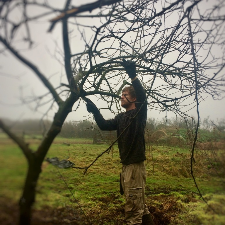 Sid Hill Ecological gardens pruning masterclass