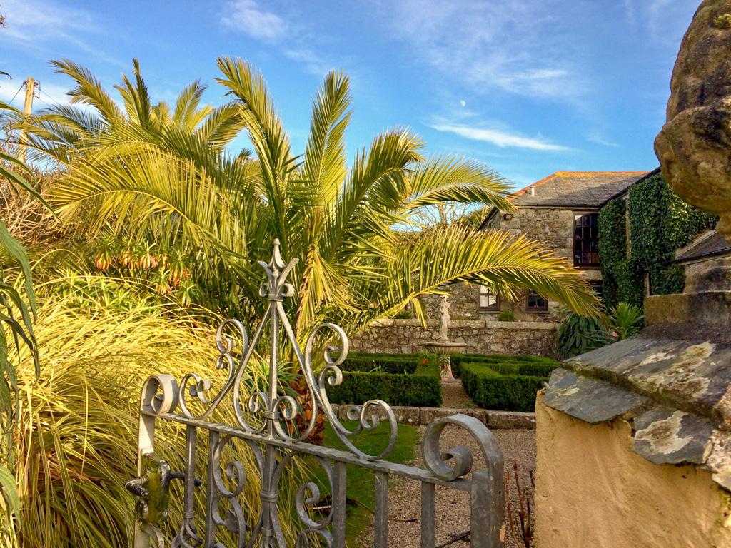 Ednovean Farm - sub tropical garden for garden lovers in late winter