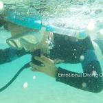 体験ダイビング前の練習@幻の島