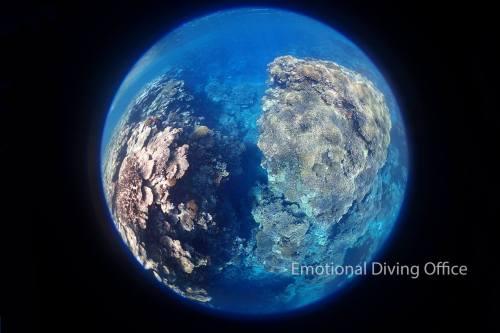青い!円周魚眼の向こう側は地球みたいです。